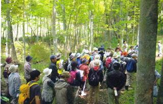 活動森林体験ページ
