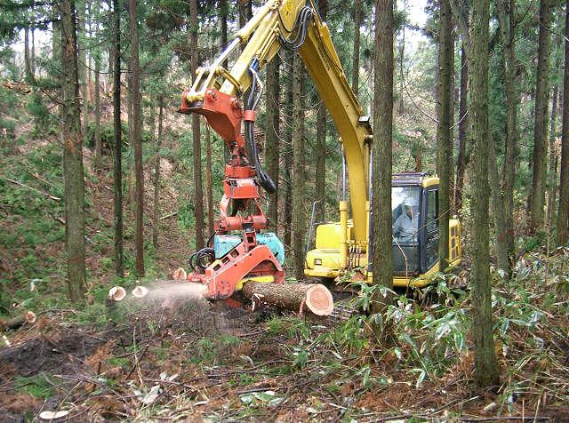 大崎森林組合のページ